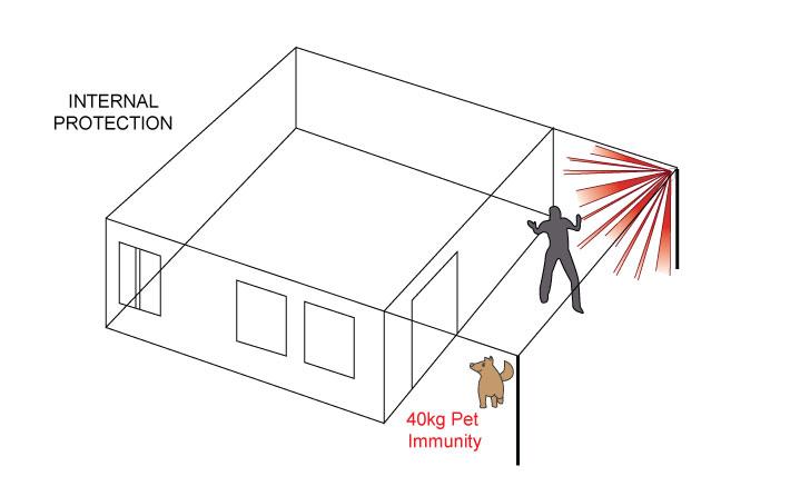 pir diagram 7