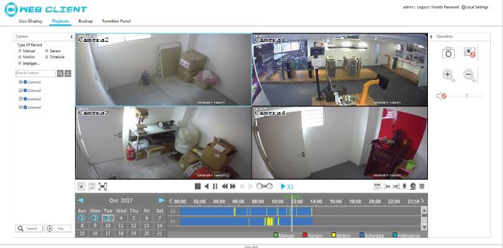 CCTV dayview playback