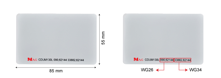CDUM130L–dual frequency UHF mifare card in malaysia